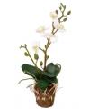 Kleine kunst orchidee wit 32 cm