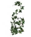Klimop slinger Hedera Helix 180 cm