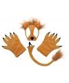 Leeuw verkleedset pluche
