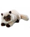 Pluche Perzische Colourpoint katten knuffel 30 cm