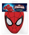 Spiderman masker van karton