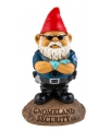 Tuinkabouter gnomeland security 23 cm