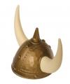 Viking helm met spijkers en hoorns