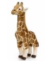 WNF pluche knuffel giraffe 38 cm